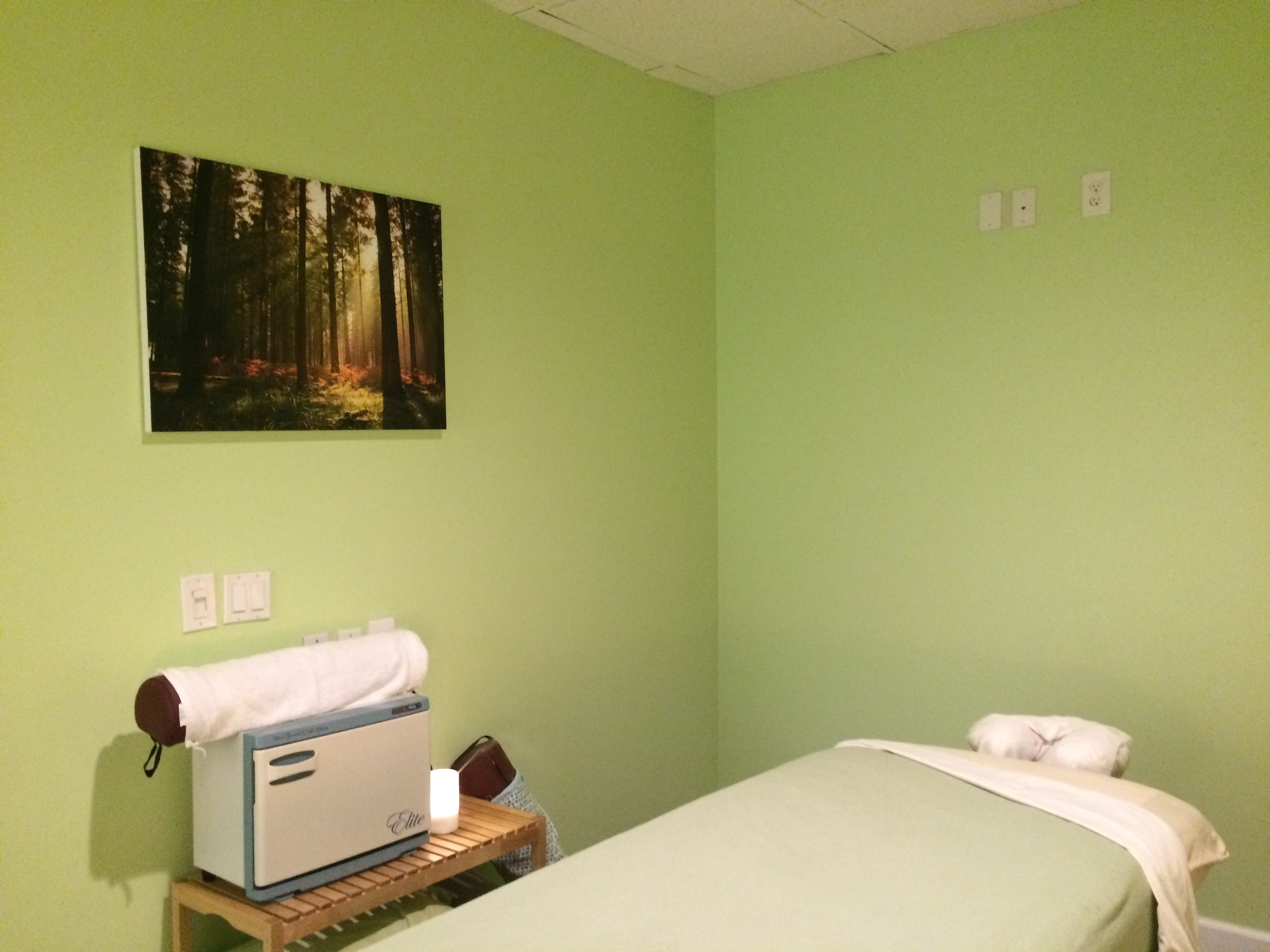 massage room 2a green forest wellness center rh greenforestwellness com green room massage therapy green massage orange ct